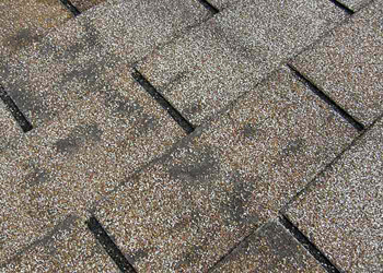 Do I need a new roof-stained shingles